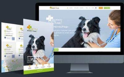 Vétérinaire Hermès/Plage